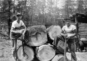 Kuhns Lumber Co.